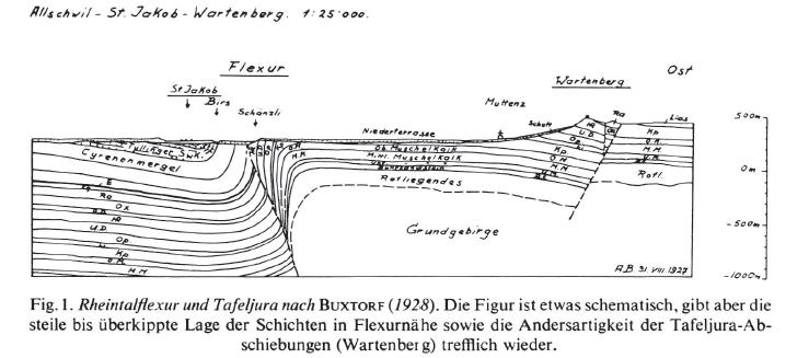 Rheintalflexur